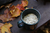 Oatmeal and Autumn Camping — Stock Photo