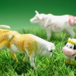 Miniature Cow Figurines — Stock Photo