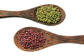 Mung Bean and Azuki Bean — Stock Photo