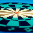 Dart Board — Stock Photo #6887750