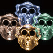 Artificial Skulls - Stock Photo