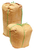 Two grocery bags made of paper — Stock Photo