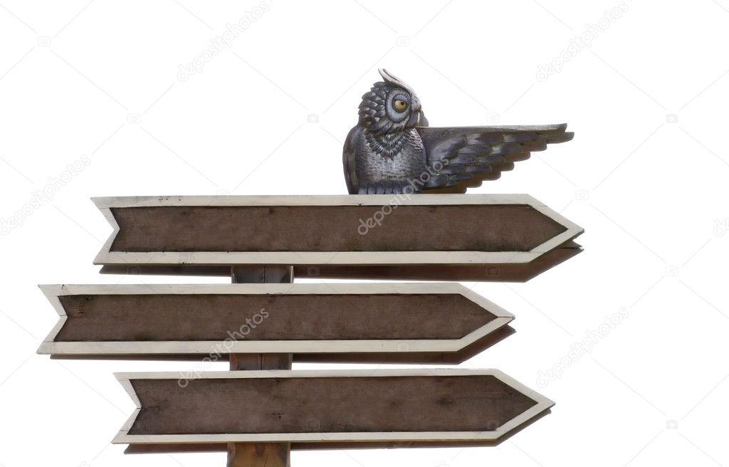 Isolated on white blank road sign with three arrows, with the figure of an owl — Stock Photo #7867668