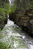 Rogue River Gorge, Oregon — Stock Photo