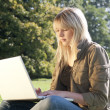 Young woman with laptop on a meadow — Stock Photo #7237277