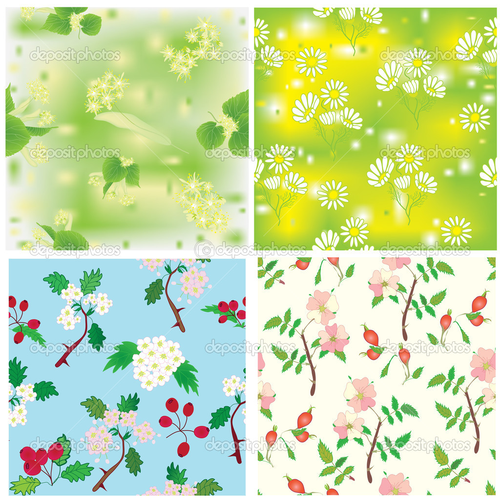 Set of seamless compositions with officinal plants — Stock Vector #6795867