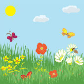 Cartoon summer landscape with grass, flowers, butterflies, sky and sun — Stock Vector