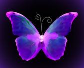 Violet butterfly. Vector — Stock Vector
