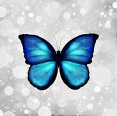Butterfly In Blue Tones. Vector — Stock Vector