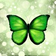 Green color enhanced butterfly. Vector — Stock Vector #7363736