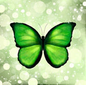 Green color enhanced butterfly. Vector — Stock Vector