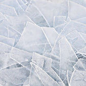 Natural ice pieces. Vector — ストックベクタ