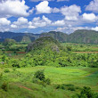 Valley in Cuba — Stock Photo