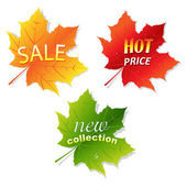 Collection Sale Leaves — Stock Vector