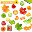 Autumn Collection Sale Elements — Stock Vector #7180261