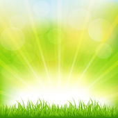 Green Background With Green Grass And Sunburst — Stock Vector