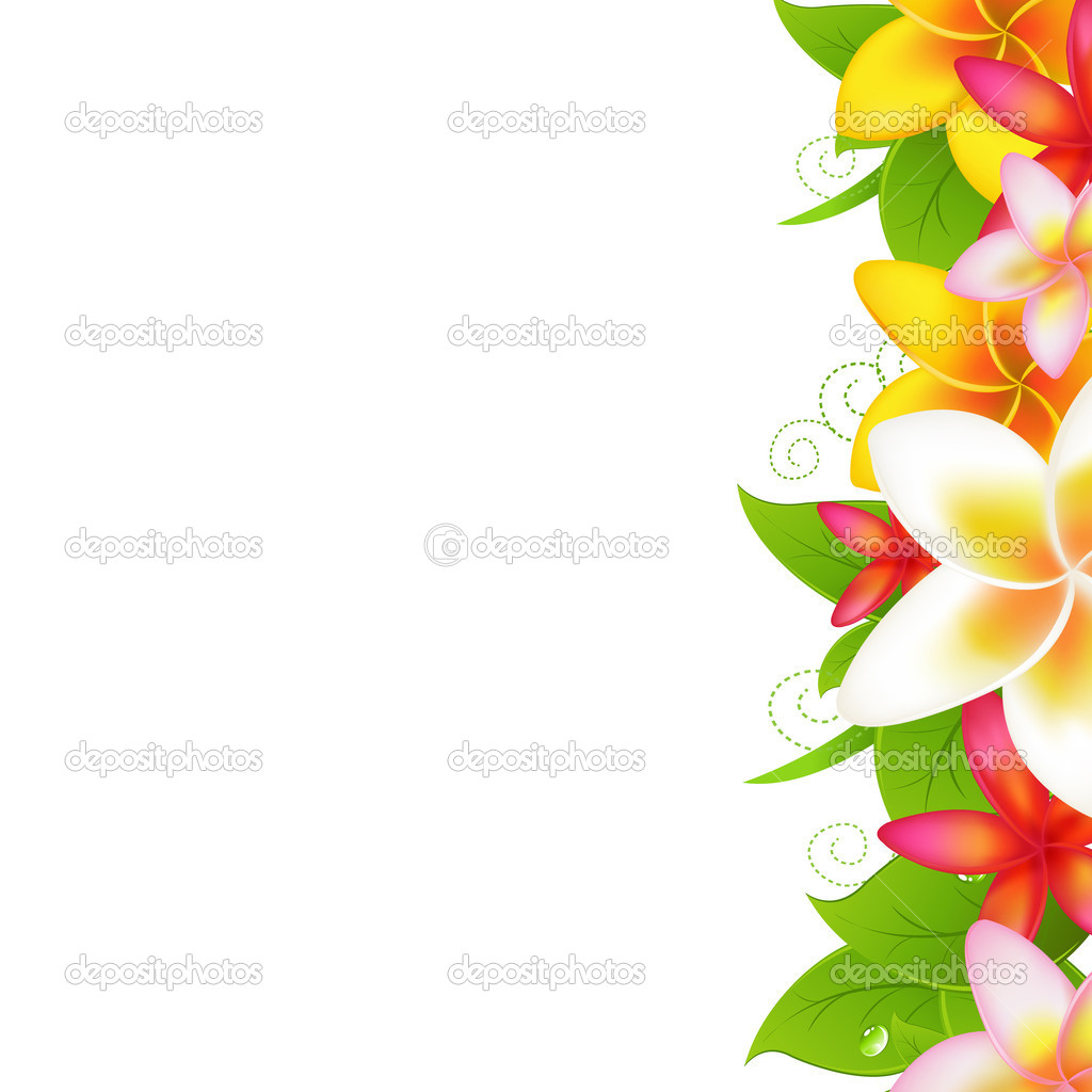 Tropical Flowers Frangipani, Isolated On White Background, Vector Illustration — Stock Vector #7815345