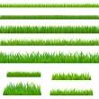 Big Green Grass — Stock Vector