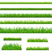 Hierba verde grande — Vector de stock