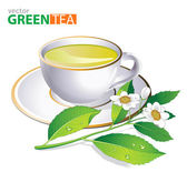 Green tea white cup and fresh tea leaves and flowers over white. — Stock Vector
