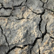 Dry ground texture — Stock Photo #7349786