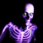 Human Bones — Stock Photo #7315392