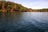 Walden Pond — Stock Photo