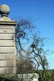 Oude hek — Stockfoto