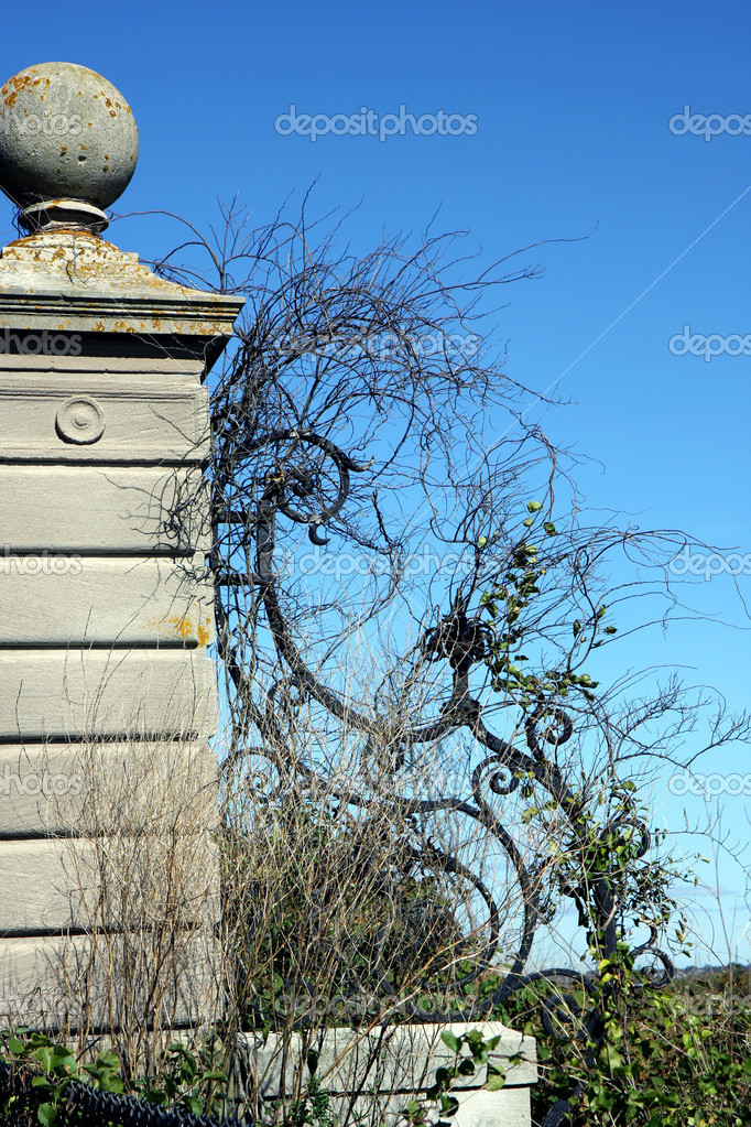 Mansion's fence in Newport cliffwalk, Rhode Island  Stock Photo #6849473