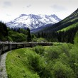 Stock Photo: Train from White Pass to Skagway Alaska
