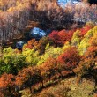 Mountain autumn landscape — Stock Photo