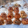 Group of Halloween pumpkin - Stock Photo