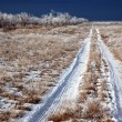 Country winter road - Stock Photo