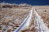 Camino de país del invierno — Foto de Stock