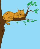 Lynx ležící na větev stromu. — Stock vektor