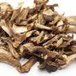 Dried Cepe mashrooms — Stock Photo