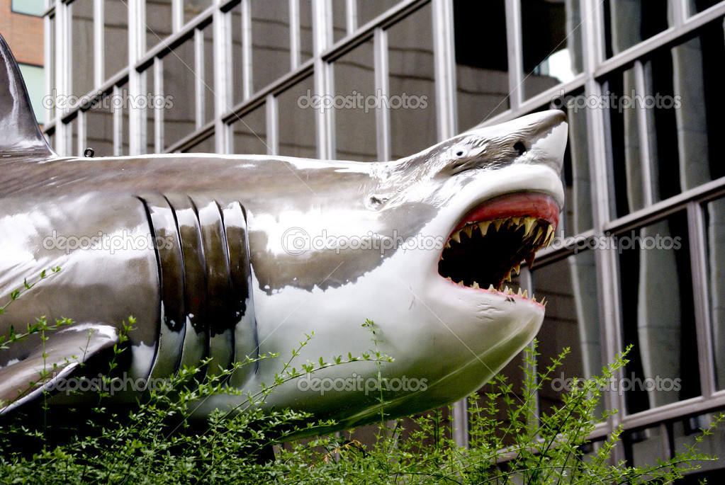 A Great White Shark prowls the streets of Washington, DC  Stock Photo #6749284