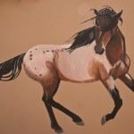 Painted Indian Pony — Stock Photo #7899833