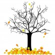 Autumn tree — Stock Vector #7175029