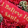 Stock Photo: I Believe in Santa