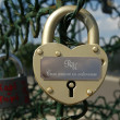 Padlocks in the shape of a heart — Stock Photo #6843574