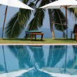 Stock Photo: Coconut palm trees reflecting in water pool near ocean