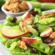 Waldorf Salad — Stock Photo #6851939