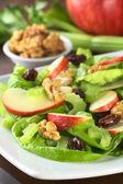 Waldorf Salad — Stock Photo