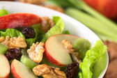 Waldorf Salad — Stock Photo