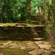 Stone Stairs and Terraces in Ciudad Perdida, Colombia — Stock Photo