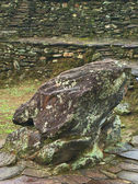 The Frog Stone in Ciudad Perdida, Colombia — Stock Photo
