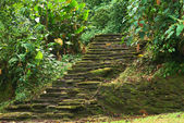 Stone Stairs in Ciudad Perdida, Colombia — Stock Photo
