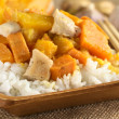Chicken, Pumpkin and Sweet Potato Curry — Stock Photo #7215502