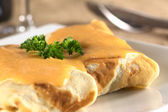 Crepe a la Hortobagy — Stock Photo